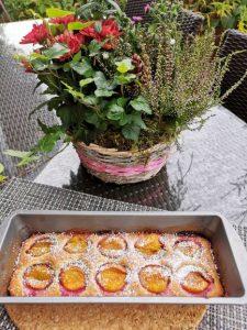 Kleiner Zwetschgenkuchen mit gehackten Kürbiskernen