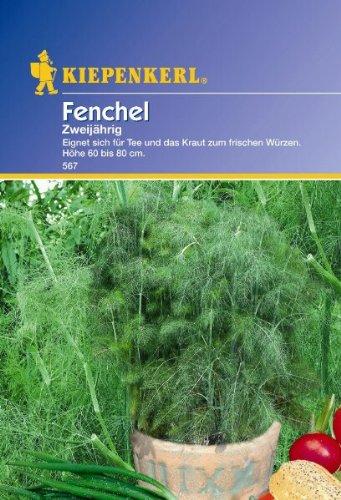 Kiepenkerl Fenchel