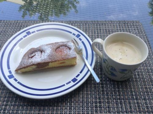 flaumiger Marmor Aprikosenkuchen